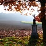 Herbst_nahe_des__Rothsees_
